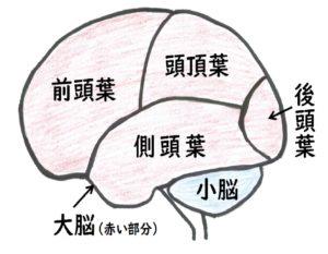 最強 の 脳 トレ